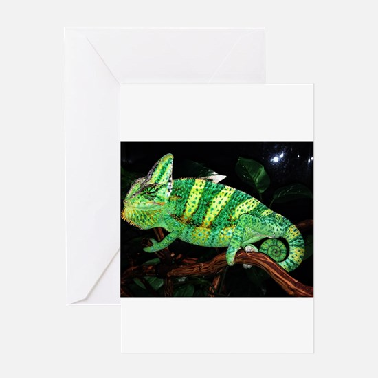 Veiled Yemen Chameleon Greeting Cards