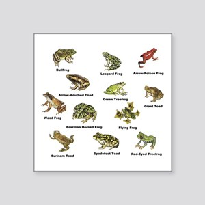 Frog and Toad Types Sticker