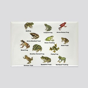 Frog and Toad Types Magnets
