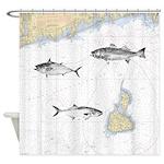 3 Fish On Block Island Sound