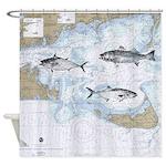 3 Fish On Nantucket Sound
