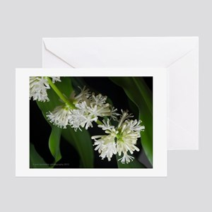 White Dracaena Blossoms Greeting Card