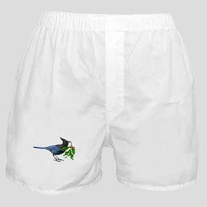 Jay Holly Boxer Shorts