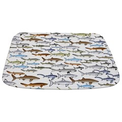School of Sharks 2 Bathmat