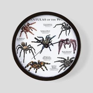 Tarantulas of the World Wall Clock