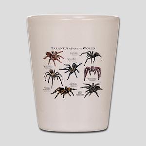 Tarantulas of the World Shot Glass