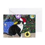 Cat Christmas Greeting Cards (10)