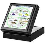 Florida Keys Fish Targets Keepsake Box