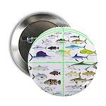 Florida Keys Fish Targets 2.25
