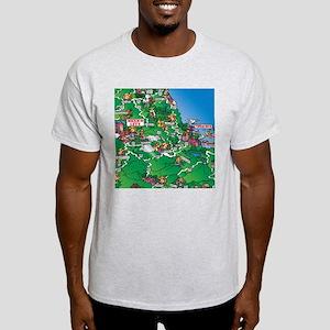 Mexico City to Veracruz Mexico Light T-Shirt