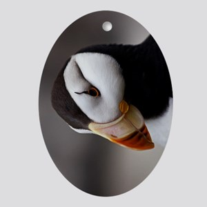 Puffin Horned 9028 Ornament (Oval)