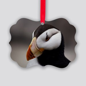 Puffin Horned 9028 Picture Ornament
