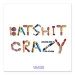 Batshit Crazy Square Car Magnet 3
