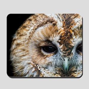 Tawny Owl  Mousepad