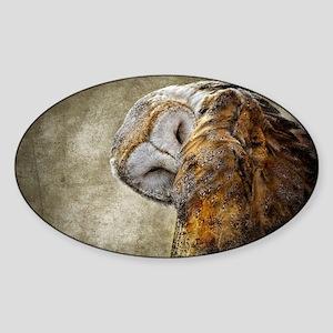 Barn Owl Sticker (Oval)