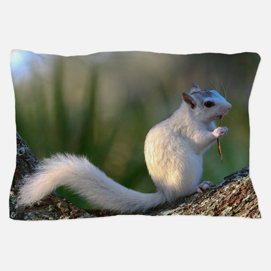 Time to Dance! Pillow Case