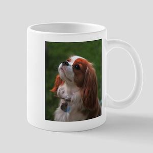 Cavalier Spaniel Mugs