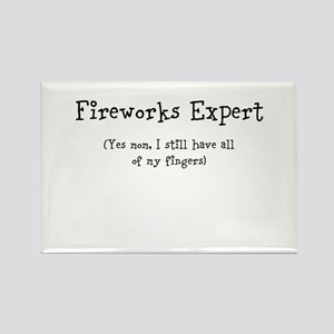 Fireworks Expert Magnets