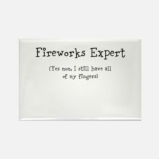 Fireworks Expert Magnets