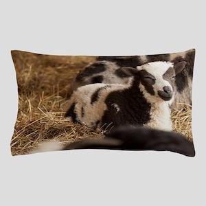 Jacob's Sheep Lamb  Pillow Case