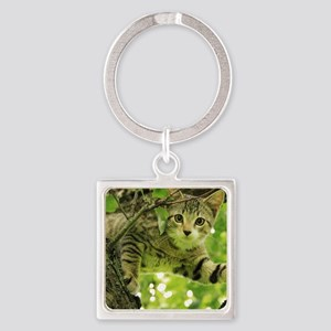 Sweet Cat Square Keychain