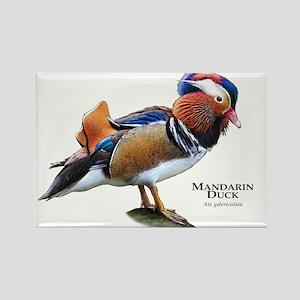 Mandarin Duck Rectangle Magnet