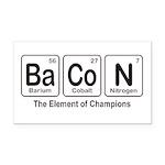 BaCoN Rectangle Car Magnet