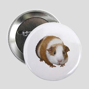 """Guinea Pig 2.25"""" Button"""