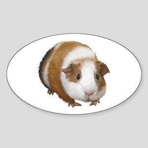 Guinea Pig Sticker (Oval)