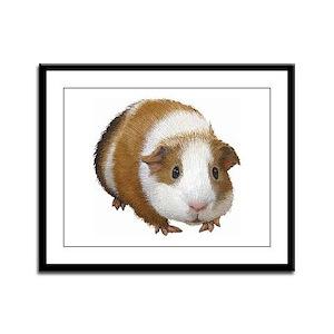 Guinea Pig Framed Panel Print