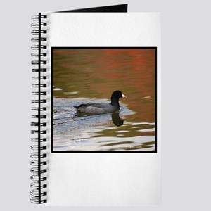 Autumn Coot Journal