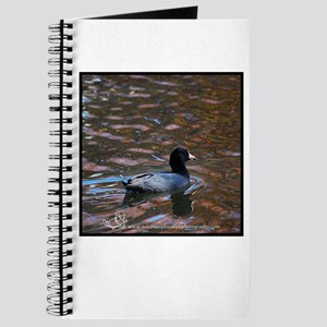 Groovy Coot Journal