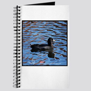 Rhapsody Of Coot Journal
