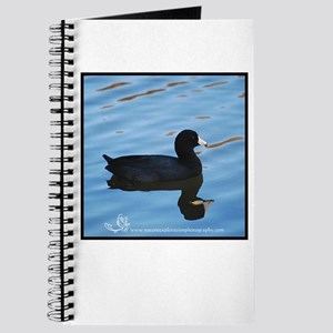 Pale Blue Coot Journal