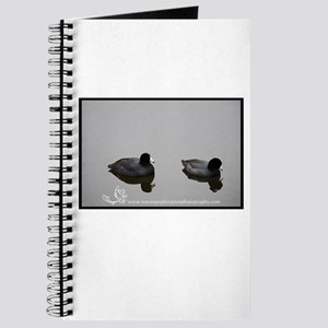 Coot Couple Journal