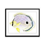 Foureye Butterflyfish Framed Panel Print