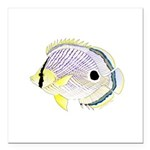 Foureye Butterflyfish Square Car Magnet 3