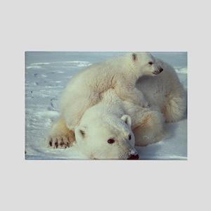 Polar Bear Magnets