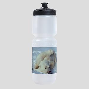 Polar Bear Sports Bottle