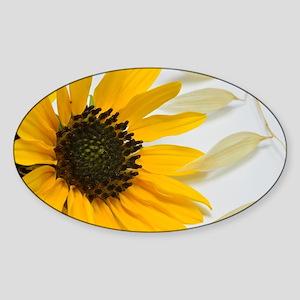 Sunflower with Wild Oats Sticker (Oval)