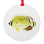Oval Butterflyfish fish Ornament