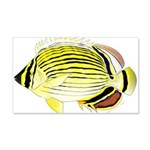 Oval Butterflyfish fish Wall Decal