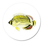 Oval Butterflyfish fish Round Car Magnet