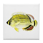 Oval Butterflyfish fish Tile Coaster