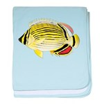 Oval Butterflyfish c baby blanket