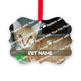 Pets Picture Frame Ornaments