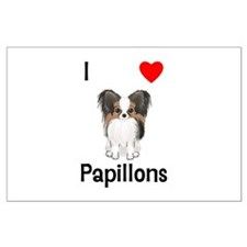 I Love Papillons (pic) Large Poster