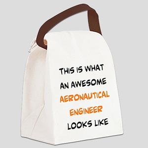 awesome aeronautical Canvas Lunch Bag