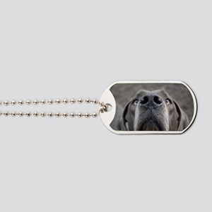 The Great Dane nose Dog Tags