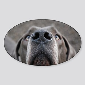 The Great Dane nose Sticker (Oval)